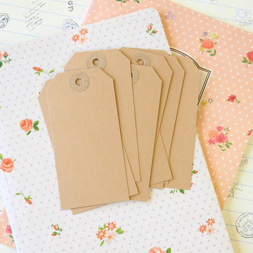 jane means buff brown old fashioned luggage tags