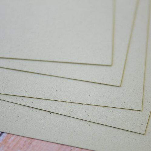 kiwi crush earth tones cardstock