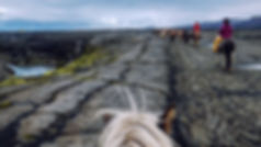 Hekla-Wilderness-Horseback-riding-tour-1