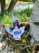 Bottles of white craft glue sit in a bird's nest nestled in the space between two birch tree branches