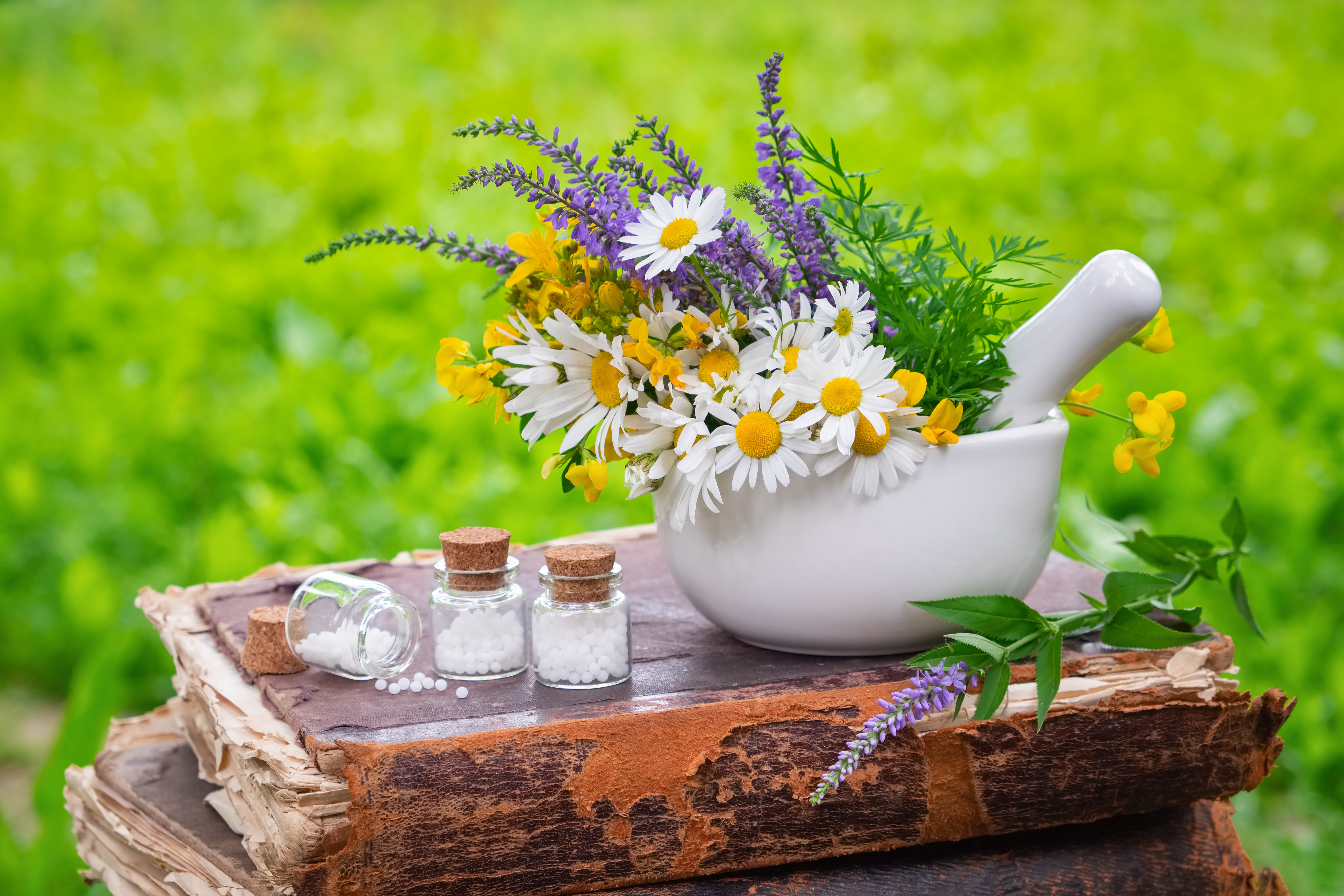 Initial Homeopathic Consultation