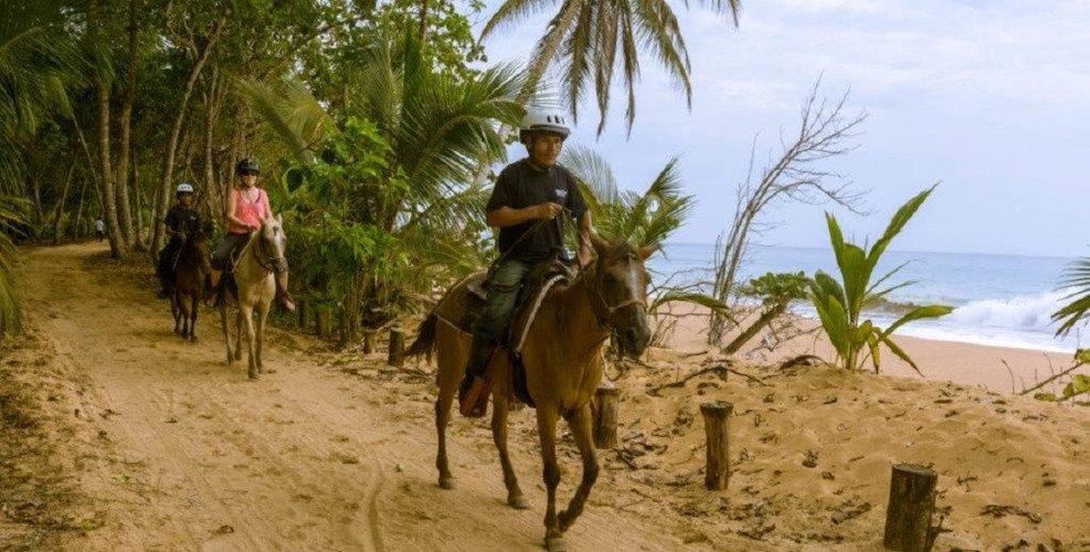 The-Horses-of-Bluff-Beach-Retreat-1024x5