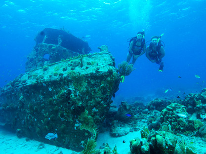 bdc_banners-PADI-adventure-diver.jpg