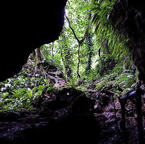 Grotte Bahia Honda.jpg