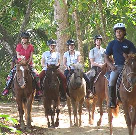 Equitation Cabalgata Bocas del Toro Pana