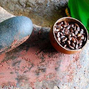 cacao-farm-31.jpg