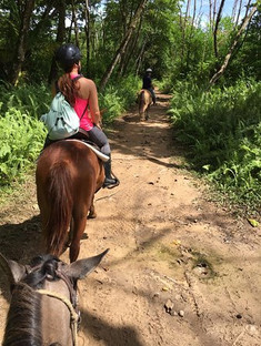 horsebackriding.jpg