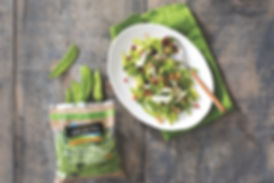 SnowPea-Pancetta-Salad-HR.jpg