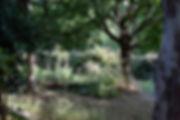 atelier_jardin.jpg