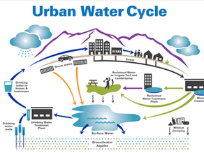 Tap water…where does it come from?