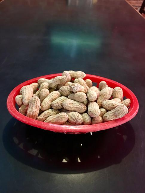 Complimentary peanuts at T-Bock's Sports Bar & Grill in Decoah, Iowa.