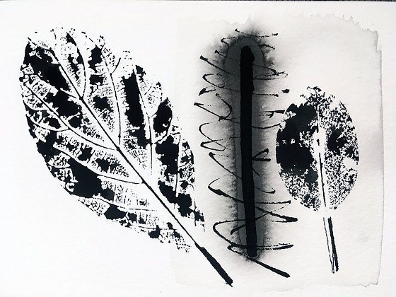 Fabiana Nakano - Artista Visual