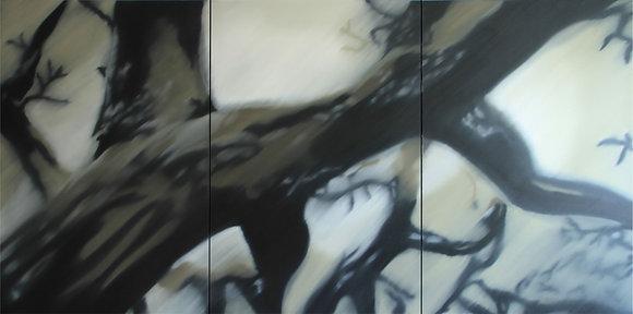 Floresta - Marcelo Paciornirk