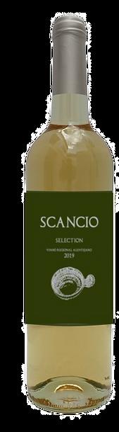 FotoScancio2%20selection_edited.png