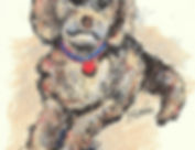custom illustration of dog
