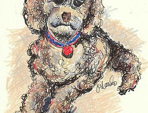 custom illustration of dog