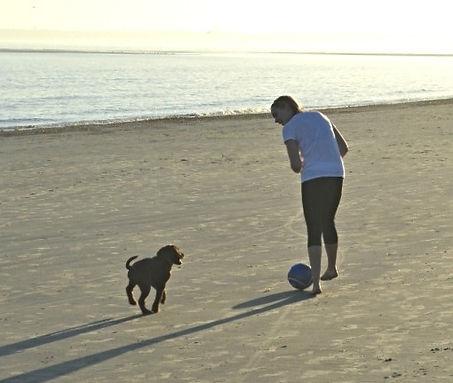 Dog Trainer St Simons