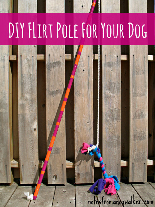 The flirt pole is a lifesaver!