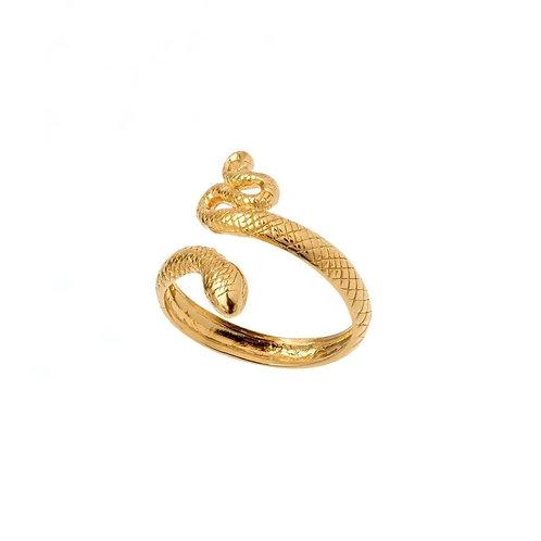 Clara snake rings
