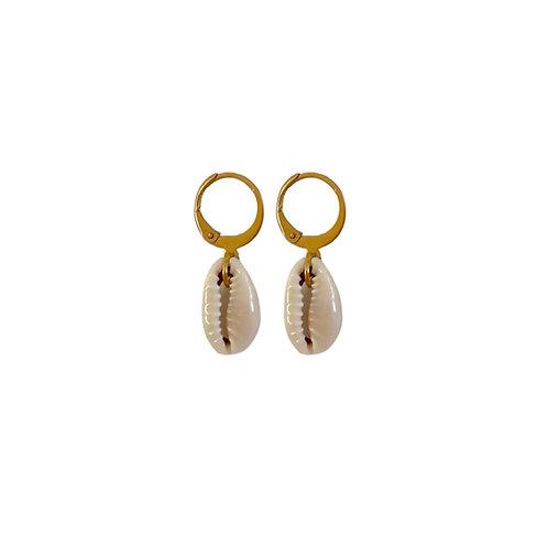 Marina shell drop earrings