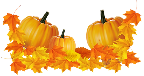 thanksgiving-pumpkin-clipart-7.png