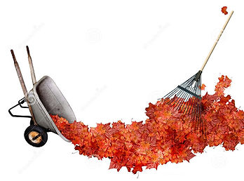 raking-leaves-234474255.jpg