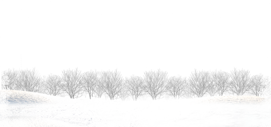 transparent-snowflake-border-20.png