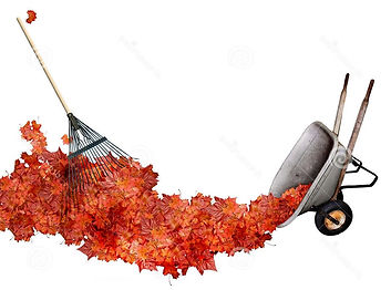 raking-leaves-234474255f.jpg