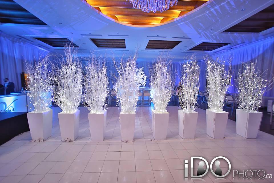 Dance-Floor Trees