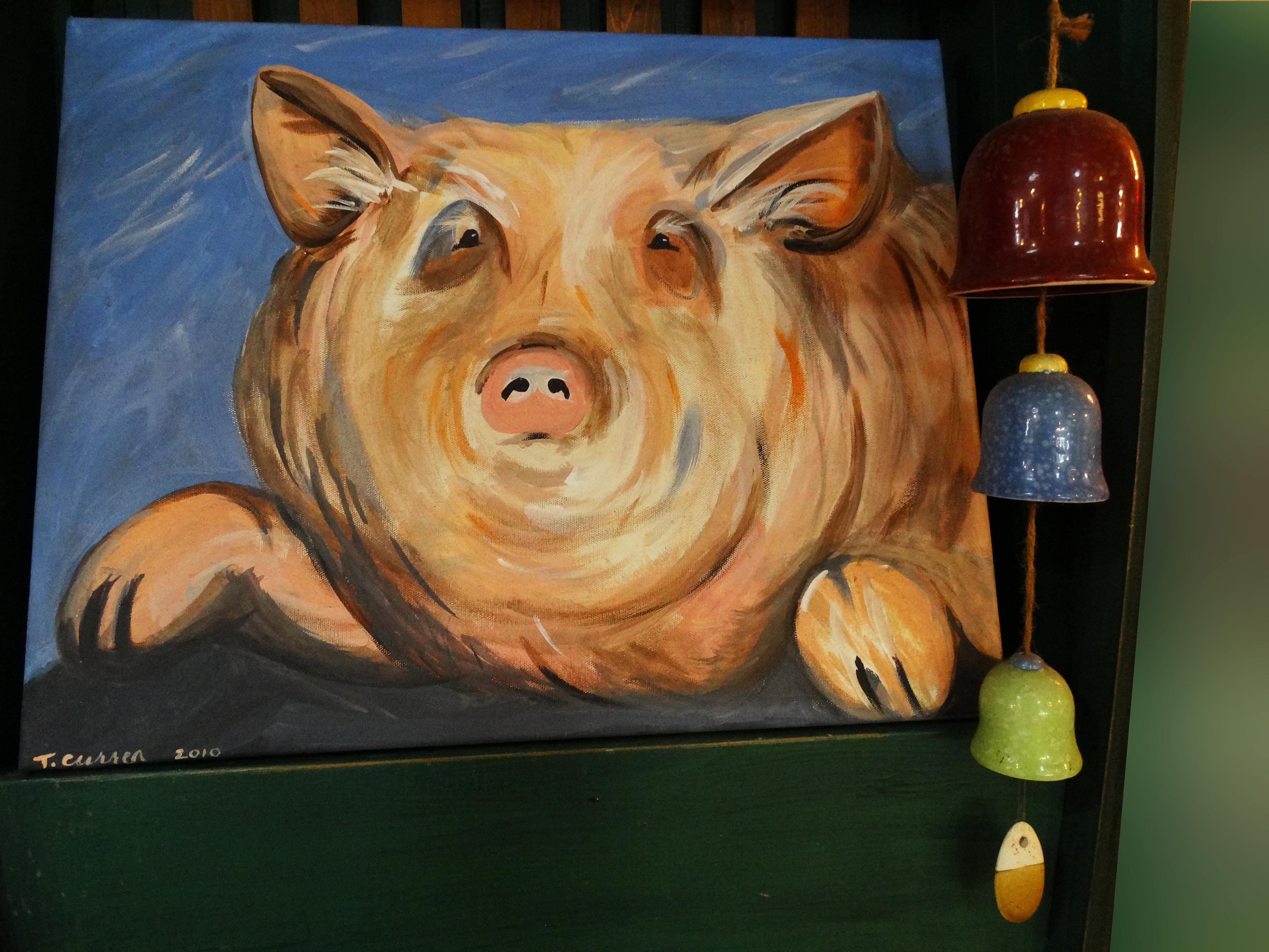 Posed Pig
