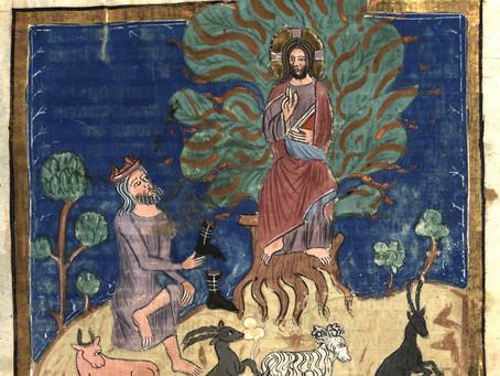 Sunday, August 30, the Thirteenth Sunday After Pentecost