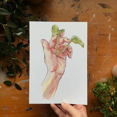 New Growth, Art Print