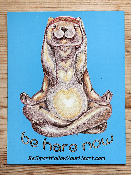 be hare now magnet