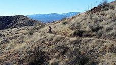 Arizona+Trail+Association.jpg