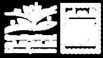 logo sascadmm copy.png