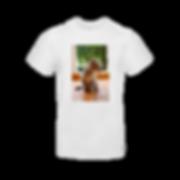 B&C T-shirt white.png