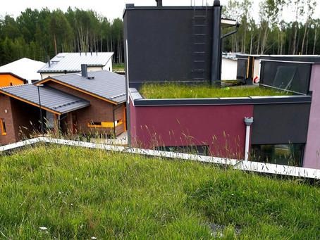 Villiinny Viherkatosta – kierrätysmateriaalit viherkaton kasvualustassa
