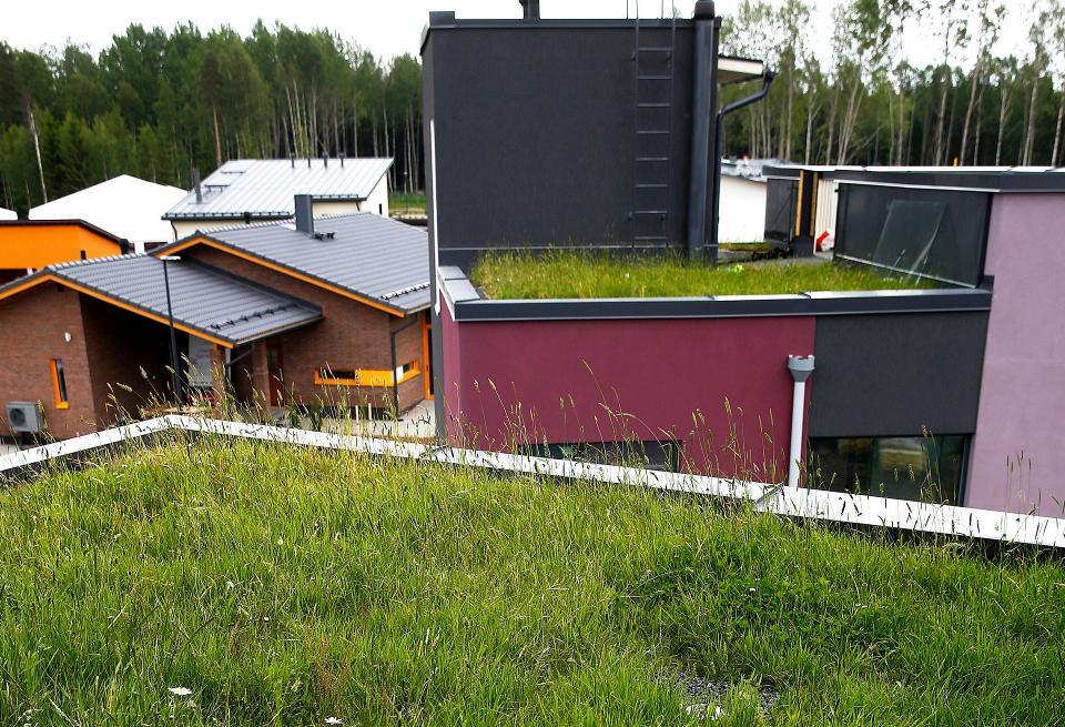 Urban Villa -talon viherkatto Vantaan v 2015 Asuntomessualueella.