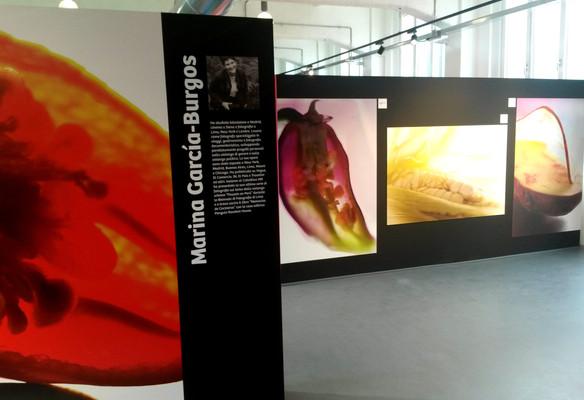 PERU_MILANO EXPO 2015