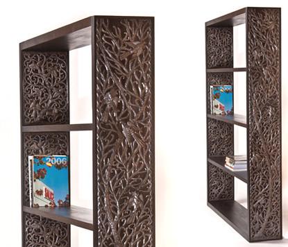 Bookshelf - Haiti