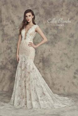 Calla-Blanche-16241