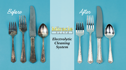Miracle Plate Cleaning