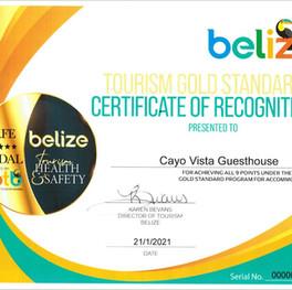 gs certificate.JPG
