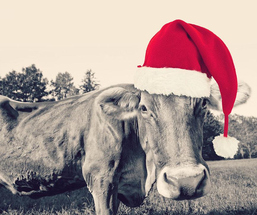 Steakmeisterei_Weihnachten.jpg