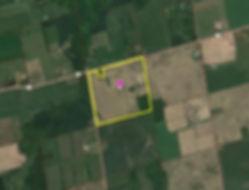 Mulmur Farm_Birdview.JPG