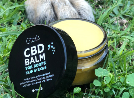 All About CBD Balm!