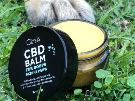 All About CBD Balm!