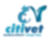 cvt_logo_web.png