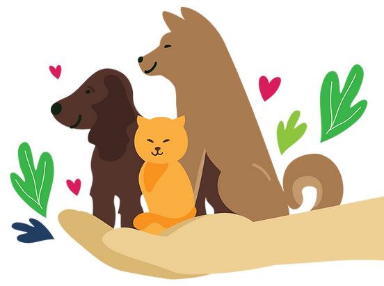 Dog and cat in hand copy.png