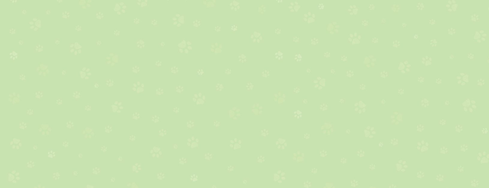 Green BG_paws.png